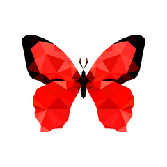 Illustration of red origami butterfly