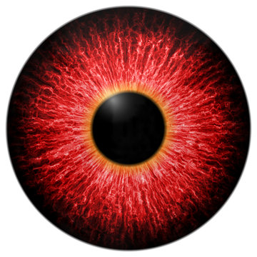 Illustration of red scary eye