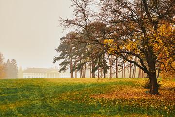 Autumn castle park