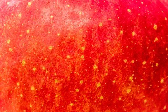 りんごの表面