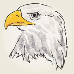 Eagle art sketch