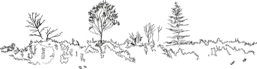 Sketch of landscape