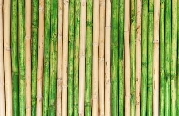 grünes und braunes Bambusrohr Hintergrund