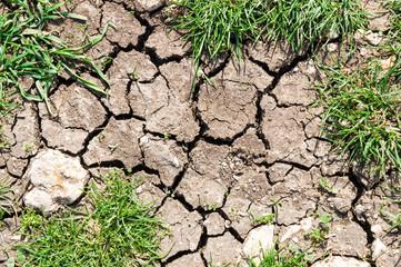 Fototapeta dry ground obraz