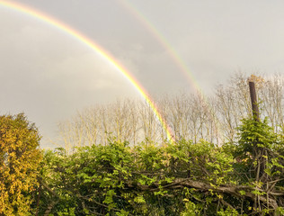 Double rainbow over the home garden
