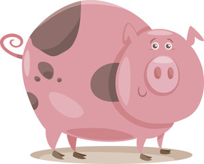 pig farm animal cartoon illustration