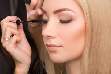 makeup artist puts mascara on the eyelashes.