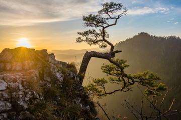 Wschód słońca na Sokolicy - Pieniny - fototapety na wymiar