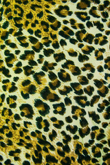 Leopard leather pattern texture background