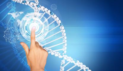 Hand finger presses on model of DNA