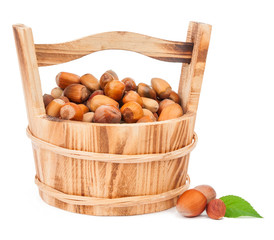 hazelnuts in bucket isolated on a white background