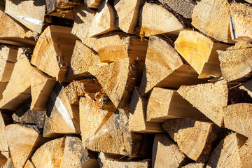 dry conifer firewood in sunlight