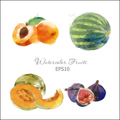 apricot,watermelon,melone,kiwi,