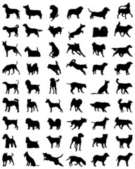 Different black silhouettes of dogs, vector