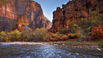 Foto op Plexiglas Natuur Park Virgin River - Zion National Park