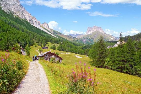 Chalet et prairie des Alpes