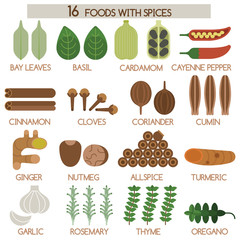 Sixteen foods of spices