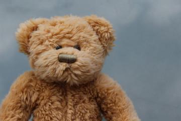 Rustic Old Teddy Bear on grey background