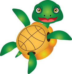 Turtle Cartoon Vector Illustration