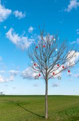 Weihnachts-Baum, Frohe Weihnachten, sonniger Wintertag