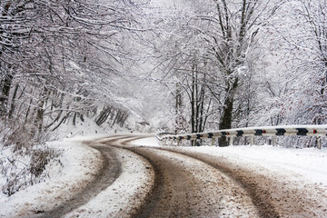 curve road through winter forest