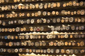 pali di legno accatastati