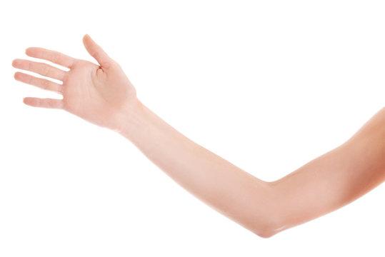 Close up on female beautiful arm