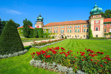 Red roses in gardens of Lancut castle on sunny day, Poland