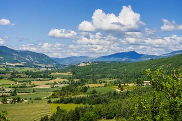 Rural landscape in Provence in France in summer.
