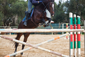 horse jumping obstacles