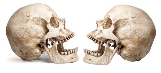 skull-open mouth