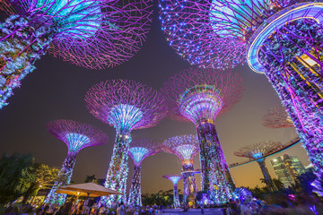 Foto op Plexiglas Singapore night scene at Singapore city