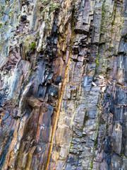 Felswand im Steinbruch am Bromberg