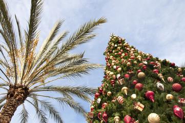 Christmas in California