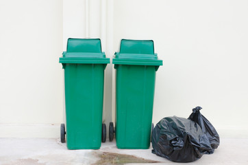 Green bin and Black garbage bags