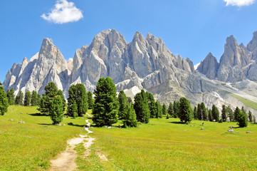 Alps on summer