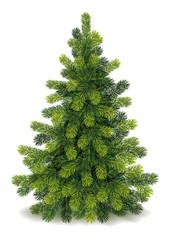 Detailed Christmas Tree