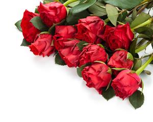 Red roses frame.
