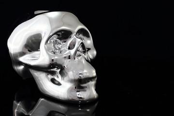 the skull silver