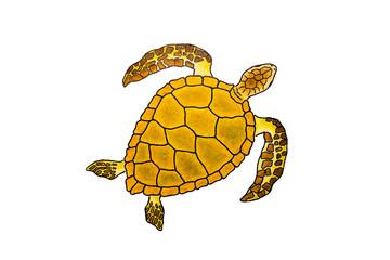 Meeresschildkröte Zeichnung