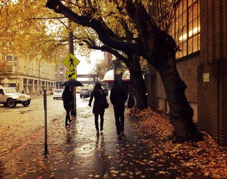 rainy November day in Seattle