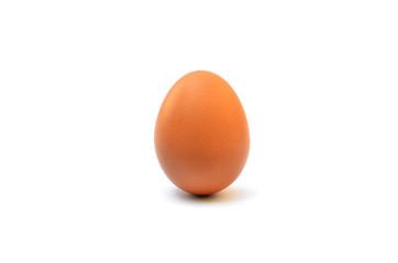 Single brown chicken egg