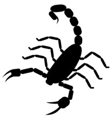 Silhouette of scorpion assembled from simple parts