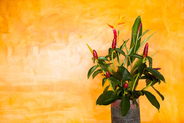 Colorful Artificial Flower on yellow background,