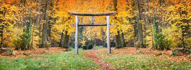 Fototapete - Japanischer Schrein im Wald