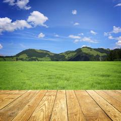Fototapete - Landschaft mit Berge / Holz
