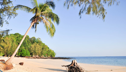 tropical beach with coconut palm and sea at Satun.