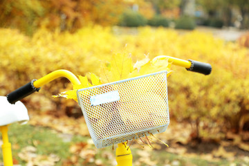 Beautiful yellow bicycle in autumn park with maple leaves in