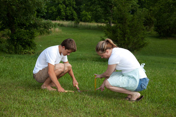 Measuring the Grass