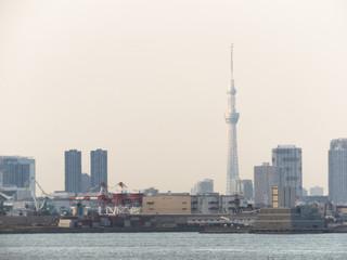 東京湾から見えるスカイツリー
